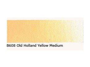 B 608 Old Holland Yellow medium 60 ml