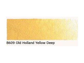 B 609 Old Holland Yellow deep 60 ml